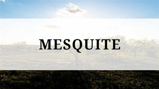 Mesquite region