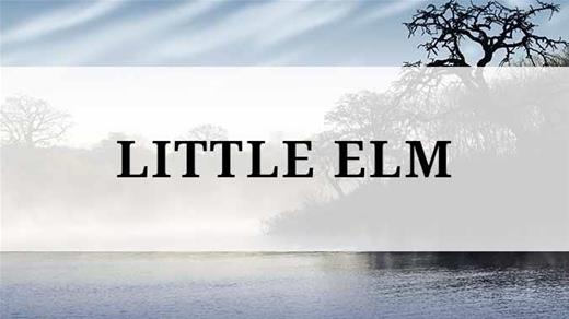 Little Elm region