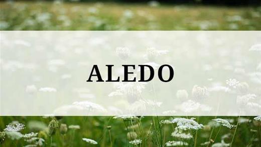 Aledo region
