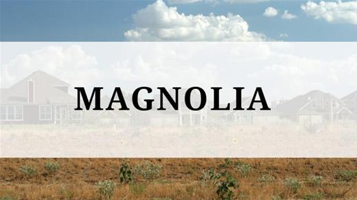 Magnolia region - Magnolia, TX