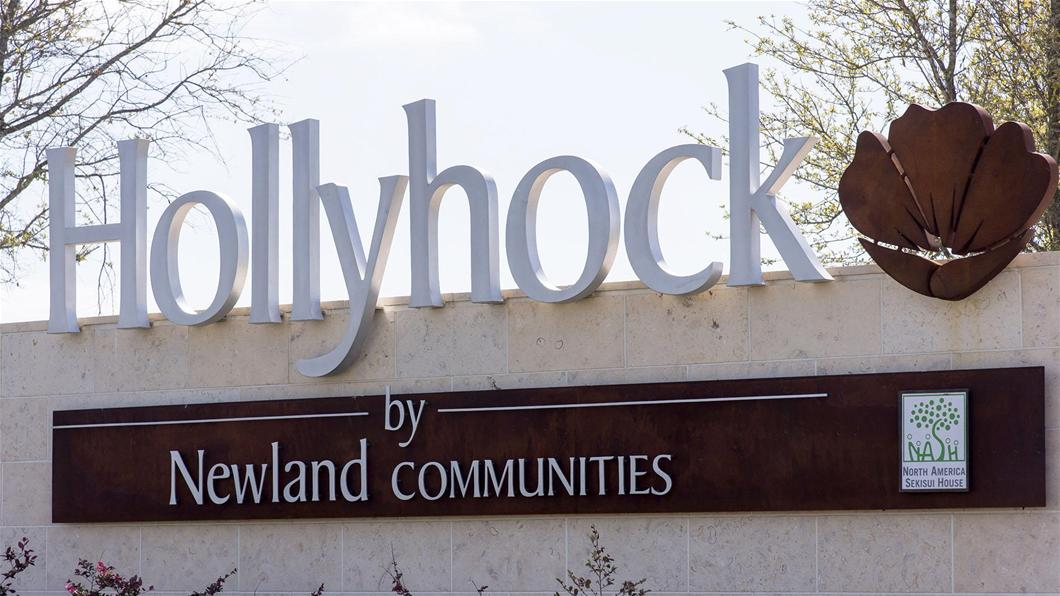 Hollyhock community image