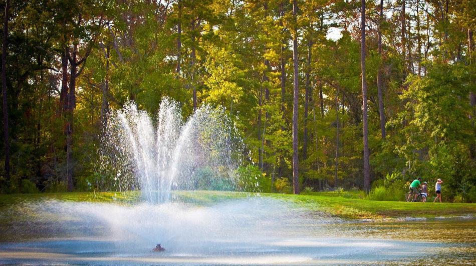 Woodforest community image