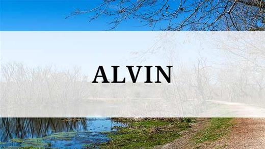 Alvin region