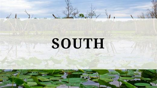 South region - South Houston