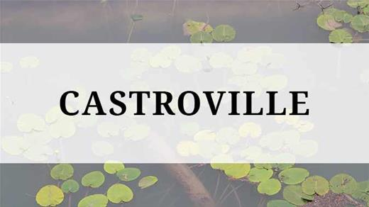 Castroville region