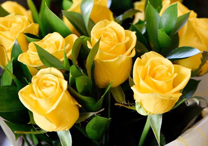 A bouquet of yellow roses, which symbolize friendship and