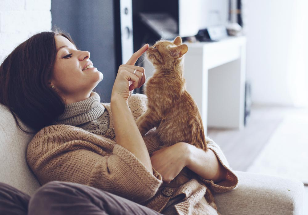 Woman with a cat. Make your home as comfortable for your cat as it is for the rest of your family