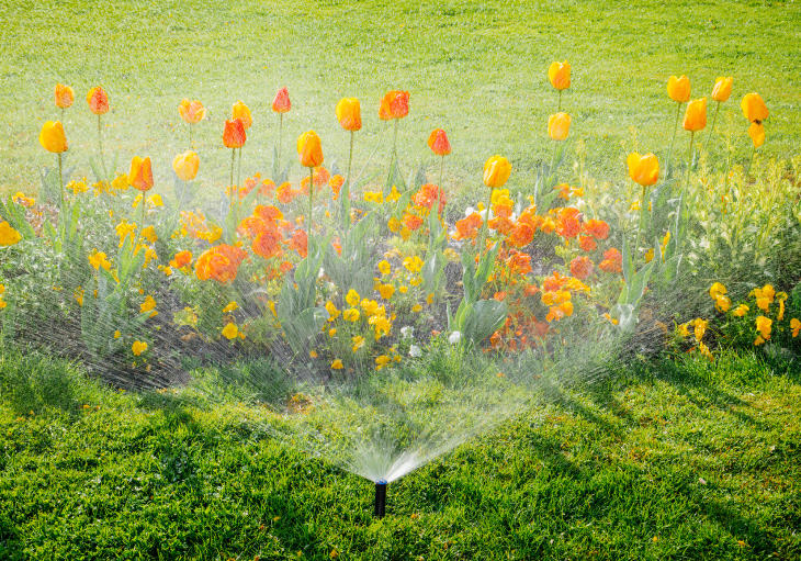 Sprinklers for a backyard